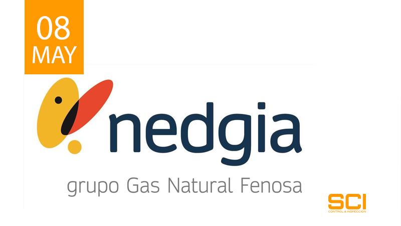 Inspecciones en Instalaciones Auxiliares de NEDGIA